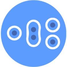icon url